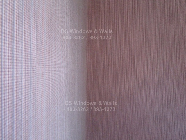 Close Up Photo of Crystal Rose Color Wallpaper