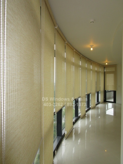 Best window covering for long glasswall office